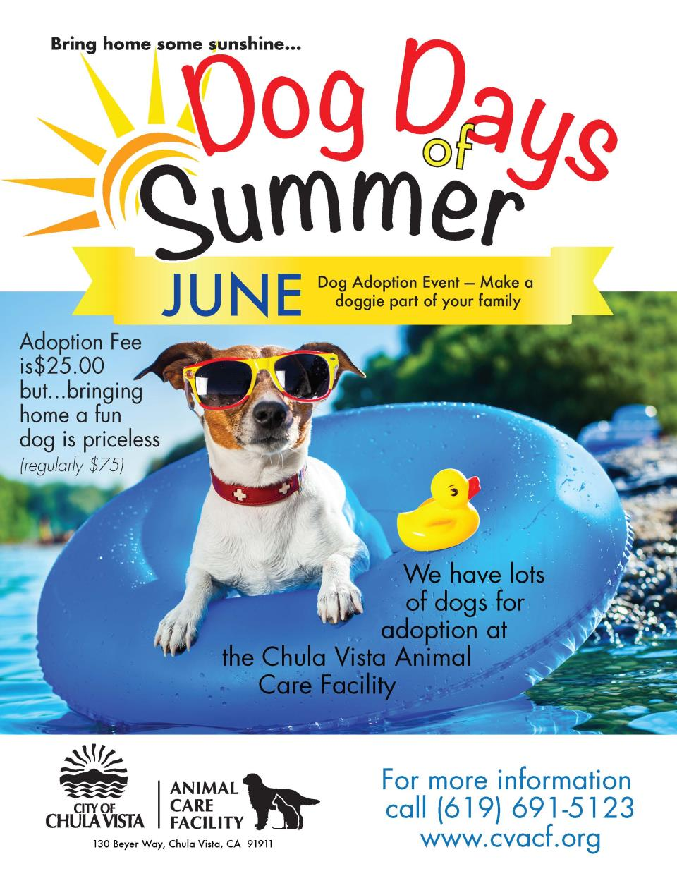 JUNE Dog Days of Summer flyer