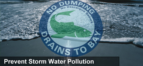 Clean Stormwater Banner